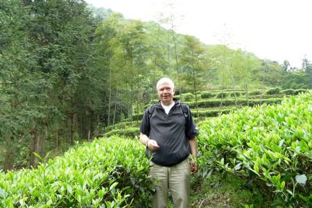Gerhard Thamm - Teegarten in Wuyishan