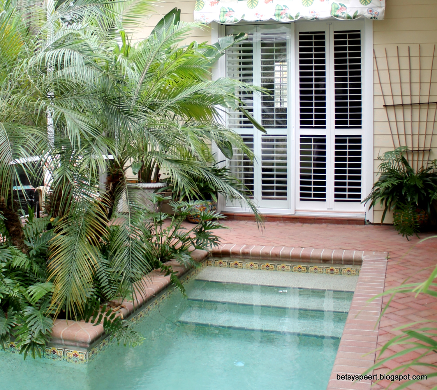 Betsy speert 39 s blog my decorating for Small modern house with pool