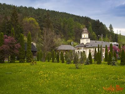 Manastirea Sfantul Ilie - Toplita