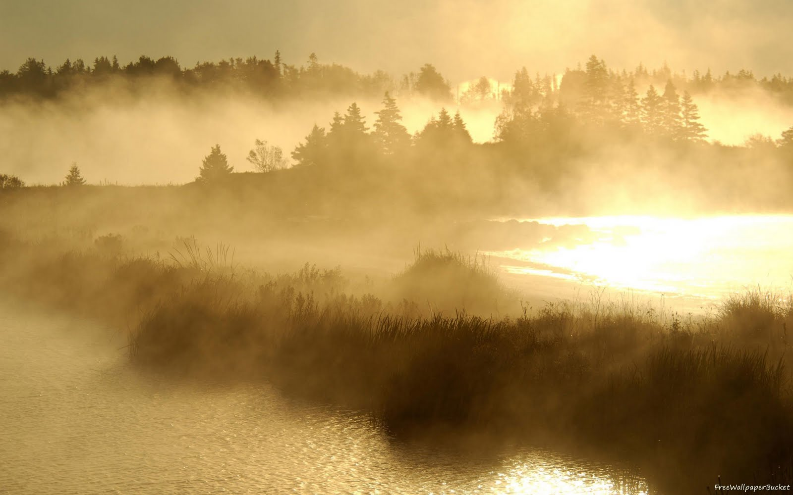 http://2.bp.blogspot.com/-SEdyiCQVSjk/TbOYJuu4B-I/AAAAAAAABqM/iBmVYkPEZgc/s1600/Sea-Sunset-Fog-River-wallpapers00007.jpg