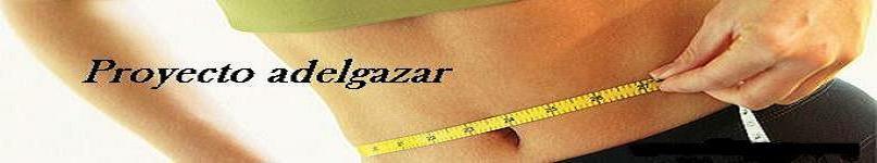 Proyecto Adelgazar