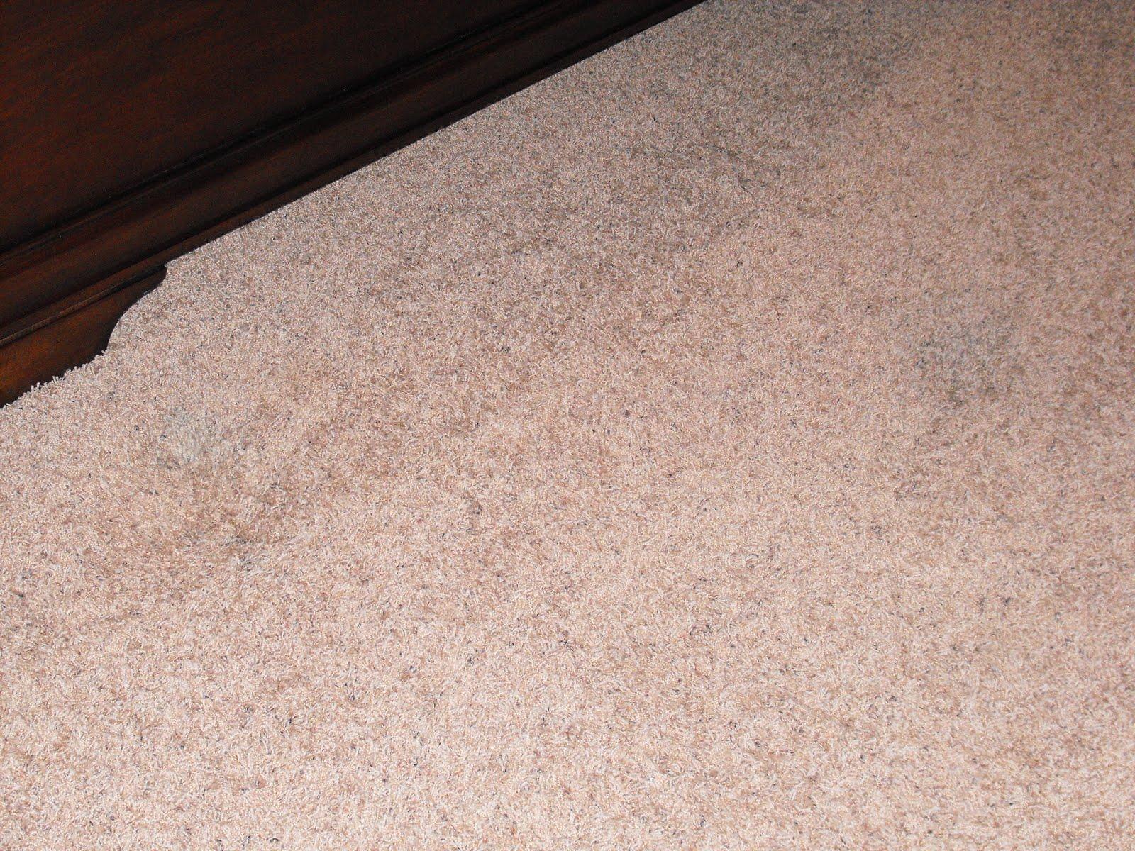 Hairspray To Get Ink Out Of Carpet Vidalondon
