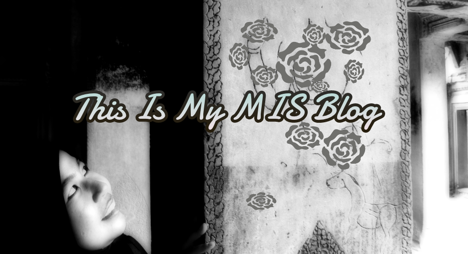 This Is My MIS Blog