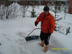 Lumenluonti- ja kolauspalveluita ennen ja jälkeen lumituiskeiden. Ota yhteyttä avuksi mummolaan?