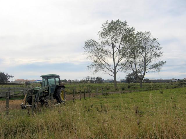 tractor, farm land, Kaikoura