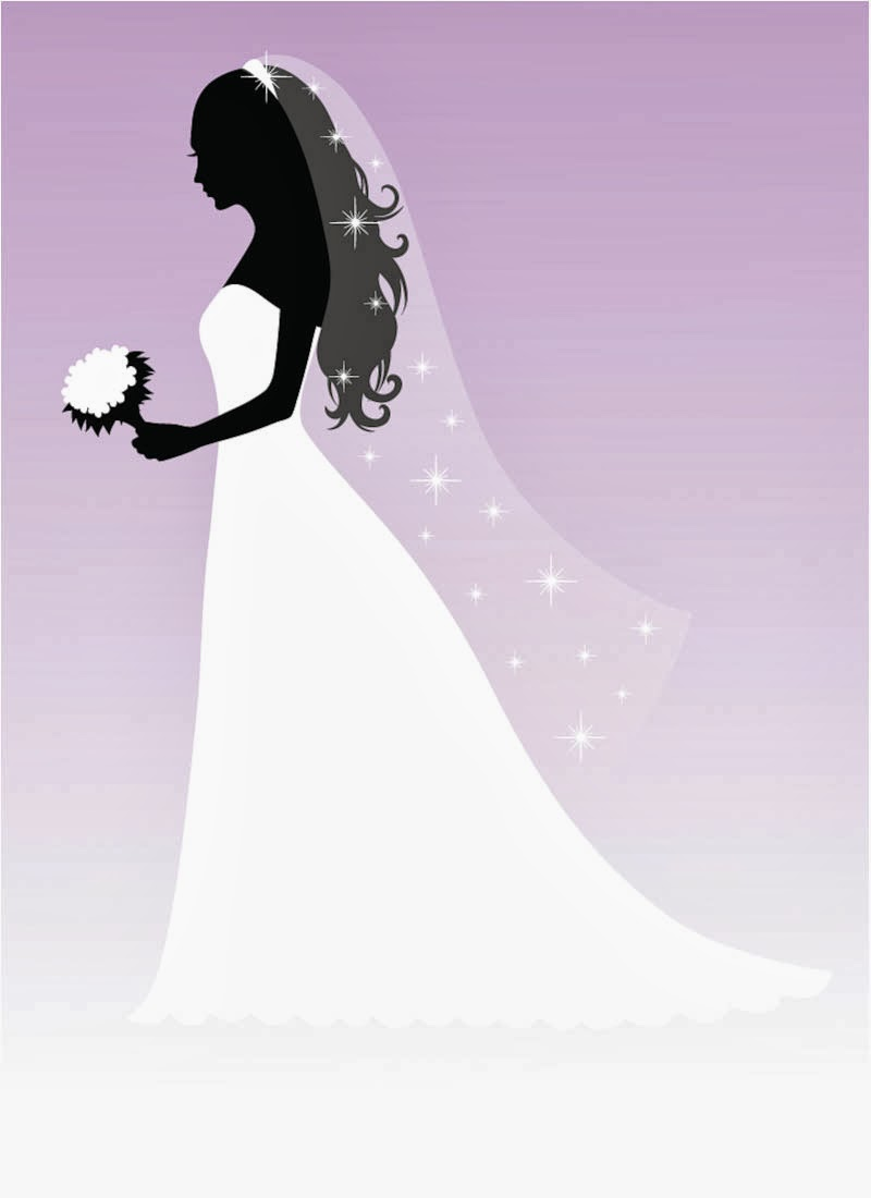 Silhouette Guide  Wedding Dress Styles amp Shapes  Davids