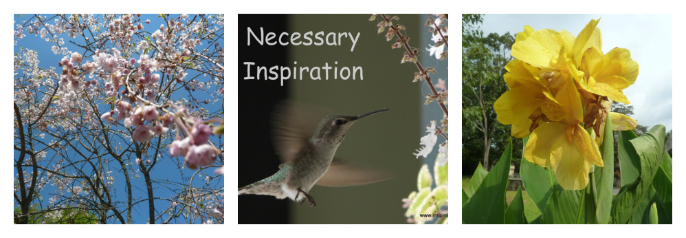 Necessary Inspiration
