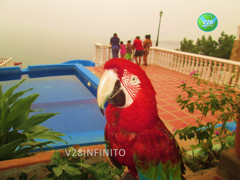 Foto en posada Villa paraiso