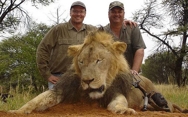 O caçador que matou Cecil o leão não merece nossa empatia