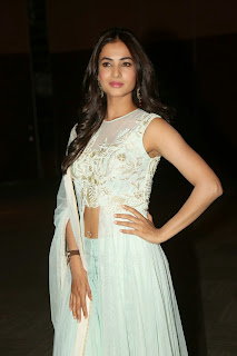 Sonal Chauhan looks Ravhisng in Choli and Designer Dress at Pandaga Chesko Audio Launch