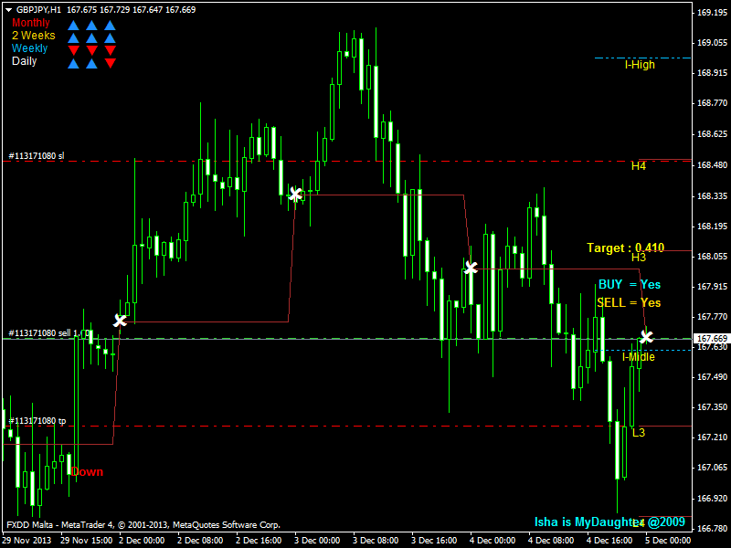 Daily trader forex