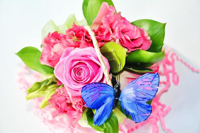 розы аква и синяя бабочка