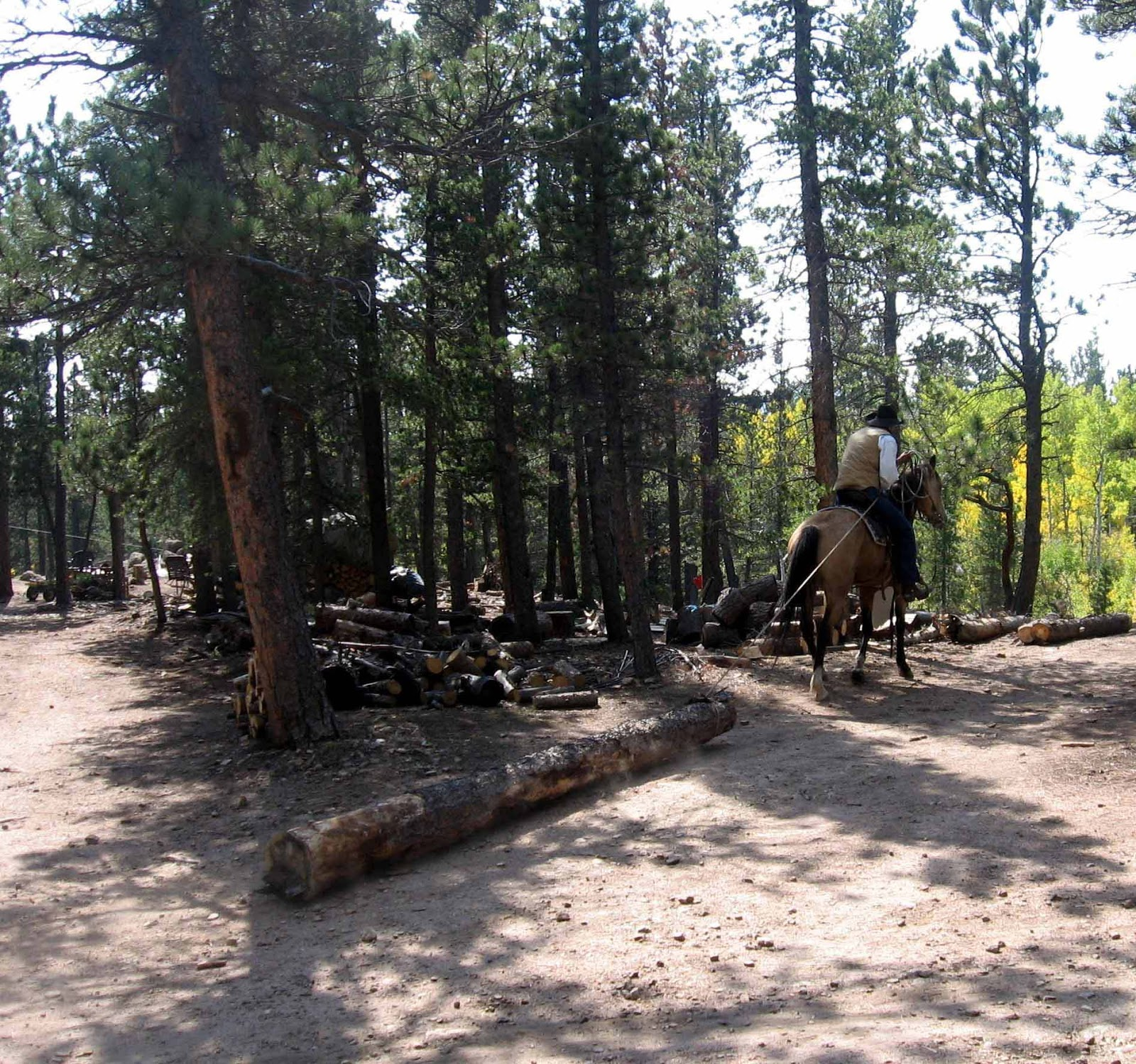 Rocky mountain bushcraft moving logs the old fashioned way