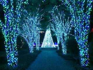 Knowtable Atlanta Botanical GardenGarden Lights Holiday Nights