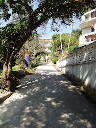 A typical walking/biking path on sweet Lamma Island!