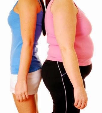 Pengertian Obesitas Dan Penyebab Obesitas , Kegemukan