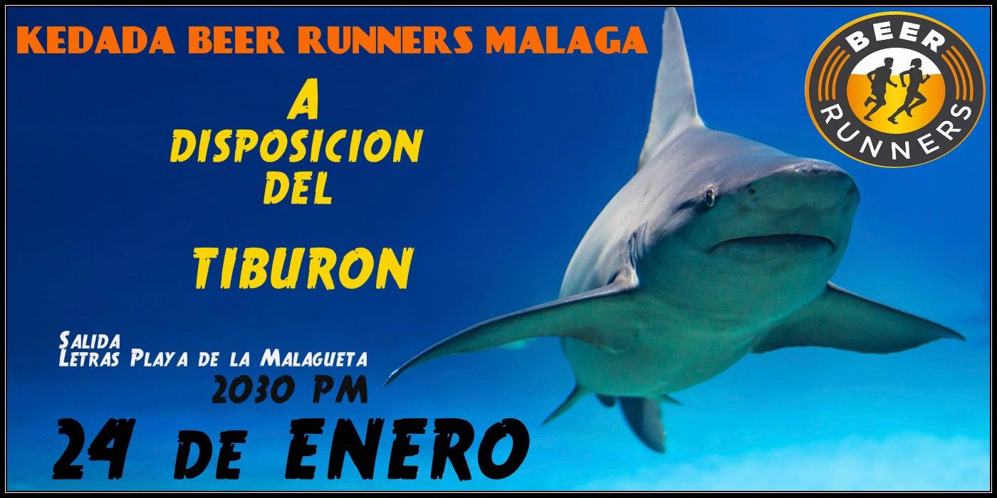 """EL """"TIBURON"""" MARCELINO"""