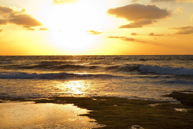 37 Rip Curl Pro Bells Beach 2015  Lineup Sunrise WSL Kelly Cestari