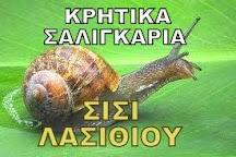 ΚΡΗΤΙΚΑ ΣΑΛΙΓΚΑΡΙΑ