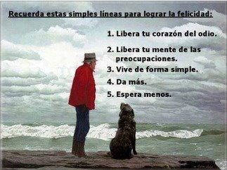 Algunas de las lecciones que nos enseñan  los perros.