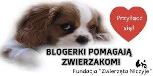 Blogerki pomagają!