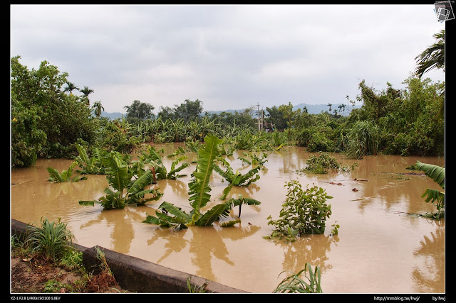 2013-07-13 蘇利颱風侵襲南投 哇!這比游泳池的水還多了吧!