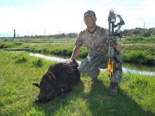 Idaho Wild Boar kill