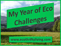 My Year of Eco Challenges - Challenge 5!