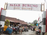 """Pasar Burung """"Splindit"""" Kota Malang; Jenis Burung Dan Info Lainnya"""