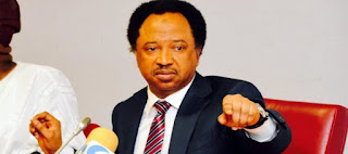 2019: Don't be blinded by political parties – Shehu Sani urges CAN