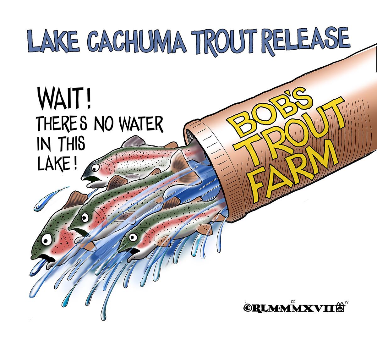 Lake Cachuma Trout