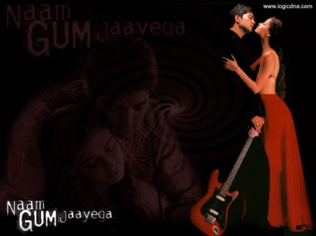 Naam Gum Jaayega (2005) DVD