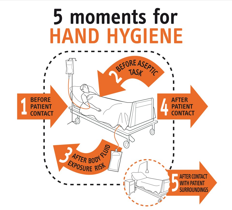 5 Moments For Hand Hygiene 187 Sagun S Blog