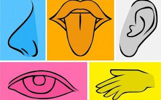 Οι 5 αισθήσεις φανερώνουν σοβαρά προβλήματα υγείας