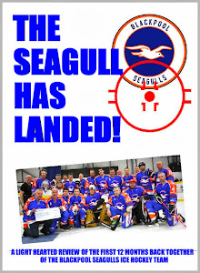 The Seagull Has Landed