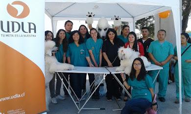 Gracias a los Voluntarios!!!