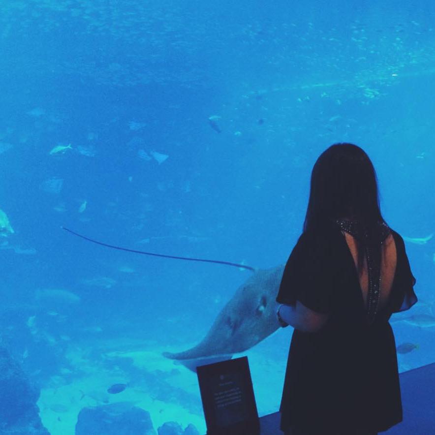 Ocean Restaurant ♥