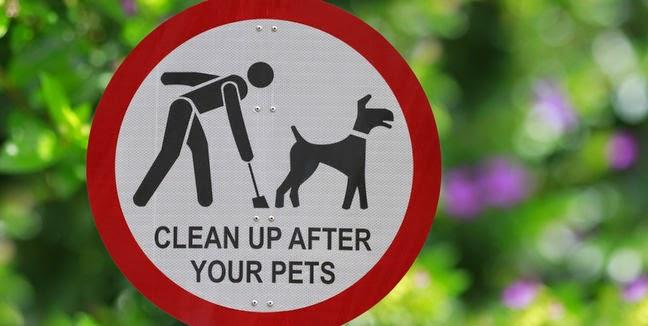 Recoge las heces de tu mascota