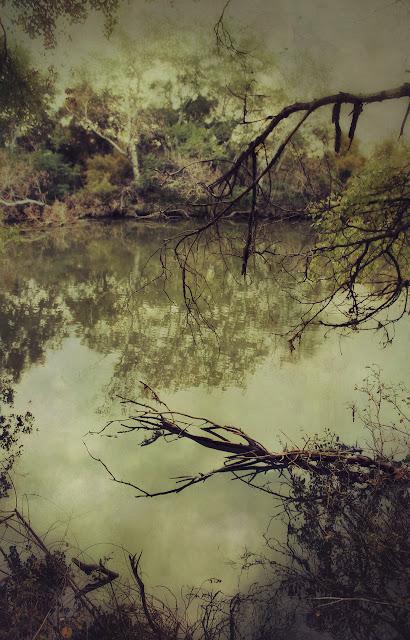 landscape contemporary art pictorialism