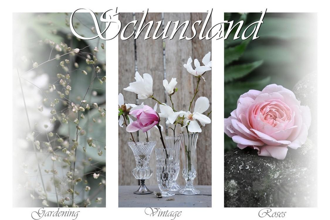 Schunsland (blog over mijn  tuin in de breedste zin van het woord)