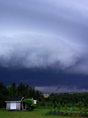 The sky has been looking  ominous for most of the summer. This particular system was very intense but not the worst we have had this year.