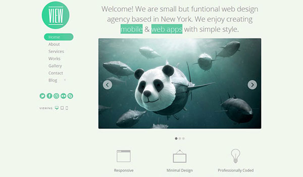 View - HTML5 Responsive Single Page Template