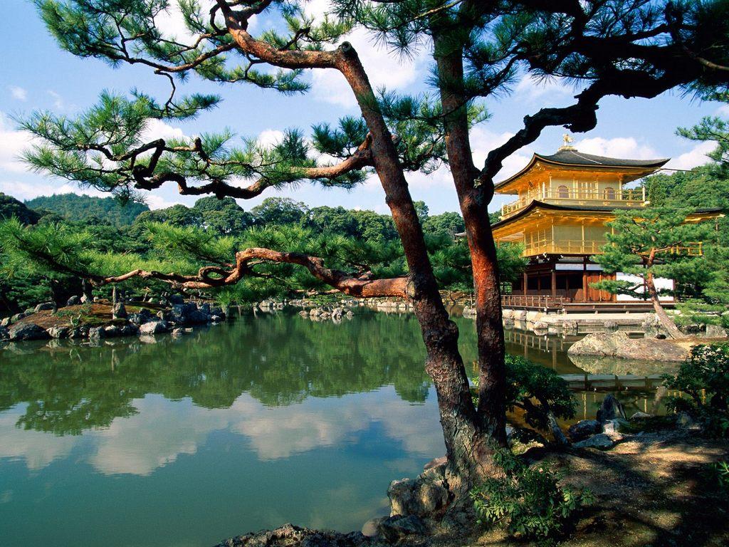 http://2.bp.blogspot.com/-SJfxCJr6ZaA/Tc_vDXZLiwI/AAAAAAAAA-8/RhGYDpMYMNI/s1600/japan-wallpaper-2-13688.jpg