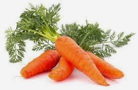 Carrot_myclipta