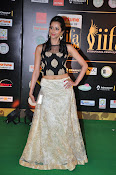 Actress Radhika at IIFA Utsavam day 2-thumbnail-8
