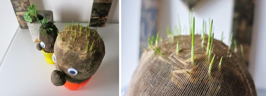 Manualidad y cuento el señor Hortiga hecho con tierra y semillas en media12