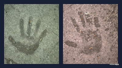 sidewalk hands found in Riverside area of Jacksonville Florida