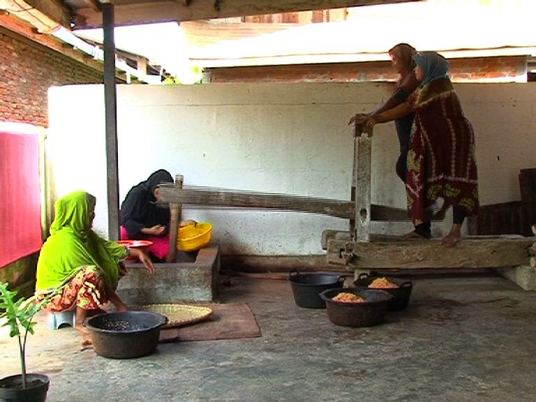 Icip-icip Yuk, Sirih Manis Dari Kota Sigli Aceh