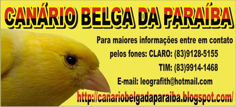 Canário Belga da Paraíba