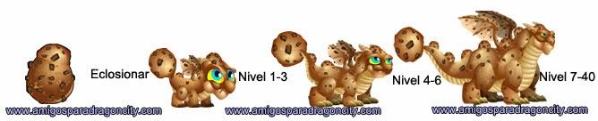 imagen del crecimiento del dragon galleta